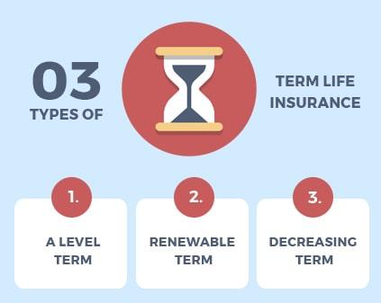 Term Life Insurance Types